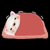 風邪をひいて寝込む猫