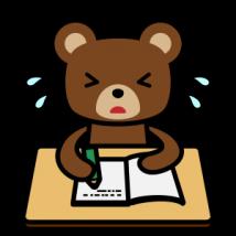 勉強中の熊