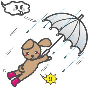 台風で飛ばされる子犬